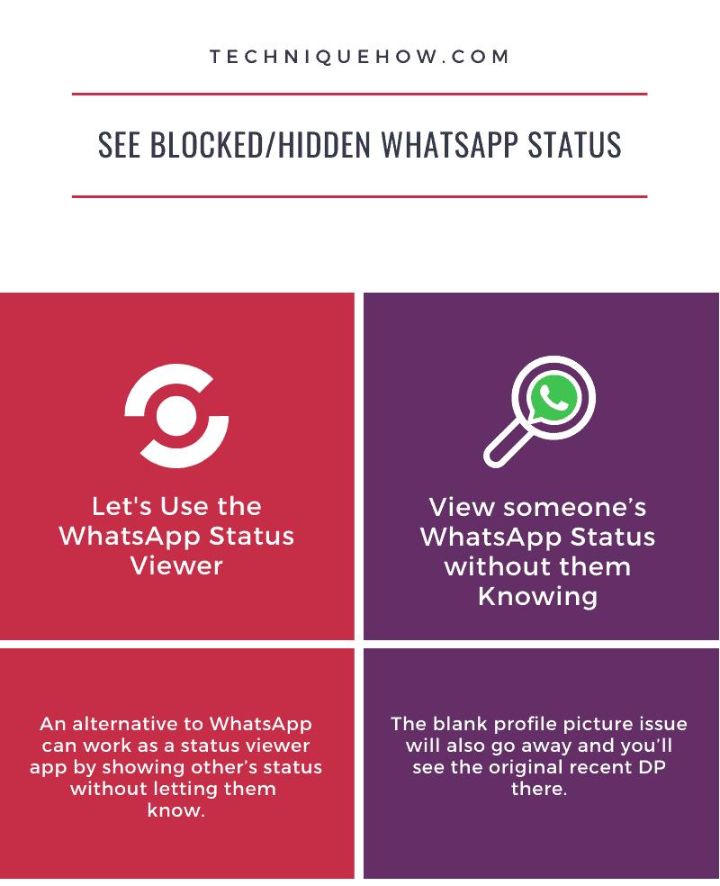 Infographics_See Blocked WhatsApp Status