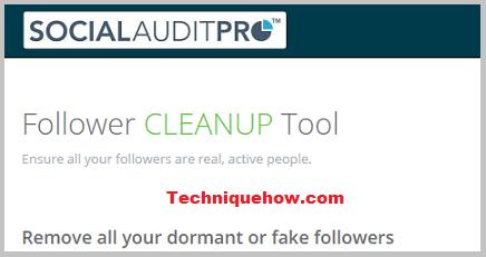 Social audit pro