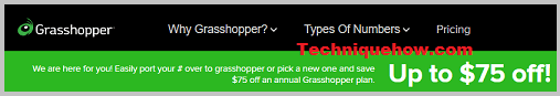 grasshopper site details
