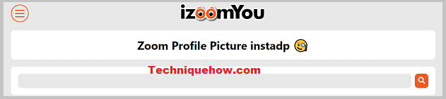 iZoomYou tool online