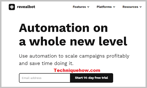 revealbot tool for auto posts