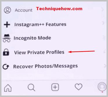 instagram++ view private profiles